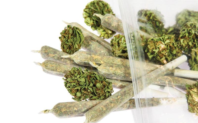 jak działa marihuana