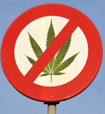 list do marihuany